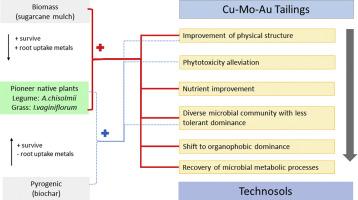 1 s2.0 S0016706117308418 fx1 biochar and biomass organic amendments shaped different dominance of