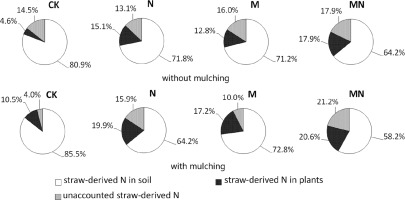 Impact of plastic film mulching and fertilizers on the