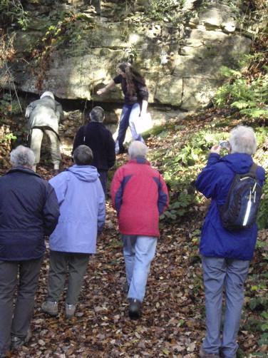 Involving local communities and volunteers in