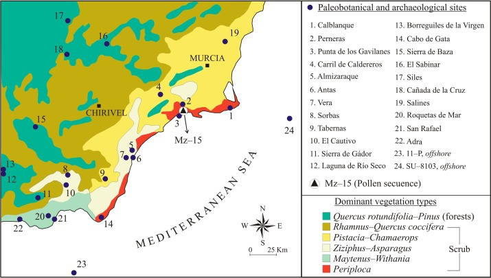 Ancient Forests in European drylands: Holocene