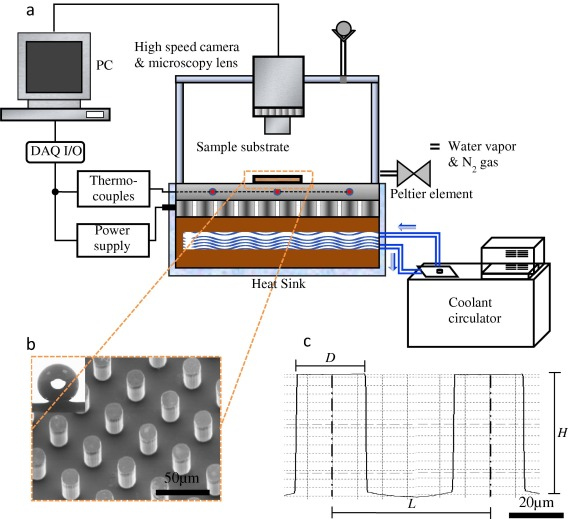 Interdroplet Freezing Wave Propagation Of Condensation Frosting On