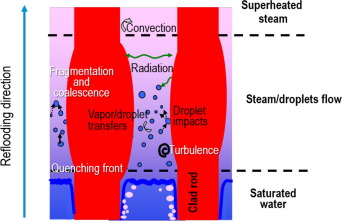 Experimental thermal hydraulics study of the blockage ratio effect