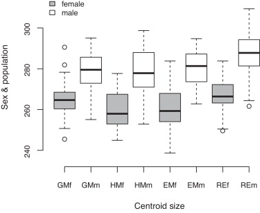 Sexual dimorphism in human mandible