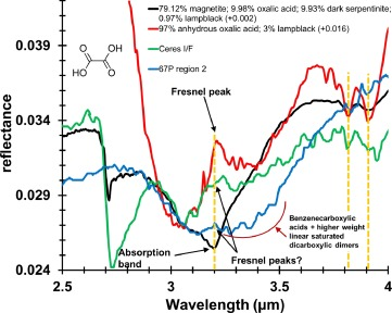 Reflectance spectroscopy of oxalate minerals and relevance to Solar