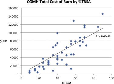 Cost Analysis of 48 Burn Patients in a Mass Casualty