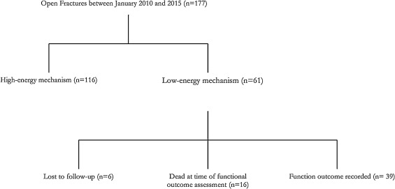 Low Energy Open Ankle Fractures In The Elderly Outcome And