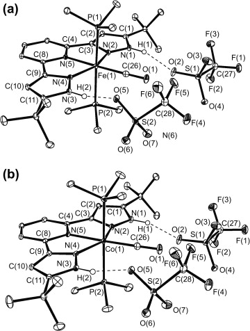 Synthesis Structures And Reactivities Of Iron Cobalt And