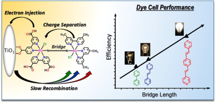 paper chromatography separation of cations and dyes
