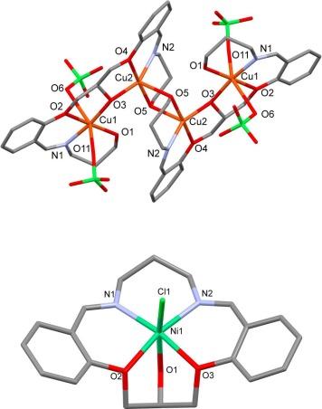 Macrocyclic Mononuclear Niii And Macroacyclic Tetranuclear Cuii
