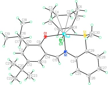 Rutheniumii Complexes With Substituted 2 Methylthio