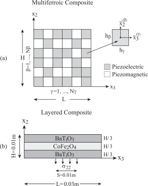 The transient response of multiferroic composites - ScienceDirect