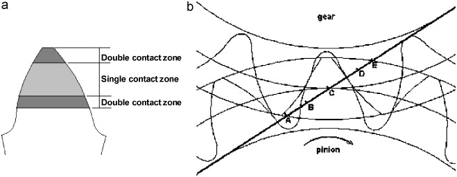 Dynamic analysis of involute spur gears with asymmetric teeth meshing of asymmetric gears a contact zone and b contact line 5 ccuart Images