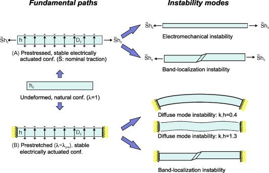 The role of electrostriction on the stability of dielectric
