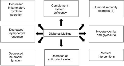 prevalencia diabetes mellitus brasil