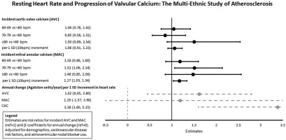 Resting heart rate and the incidence and progression of