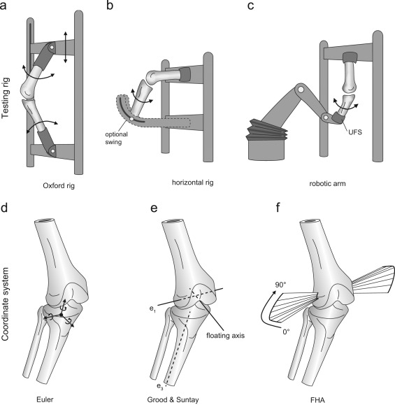 The influence of the test setup on knee joint kinematics – A meta ...