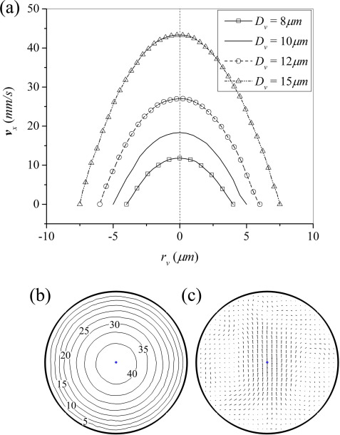 Red Blood Cell Motion And Deformation In A Curved Microvessel