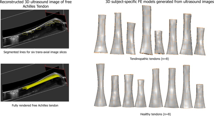 Influence of altered geometry and material properties on