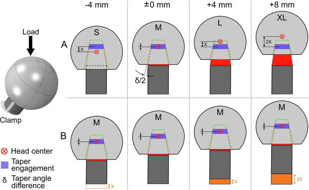 Micromotion At The Head Stem Taper Junction Of Total Hip Prostheses Is Influenced By Prosthesis Design Patient And Surgeon Related Factors Sciencedirect
