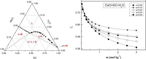 Phase equilibrium and activity coefficients in ternary