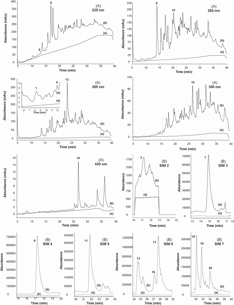 Validated Analytical Strategy For The Determination Of Polycyclic