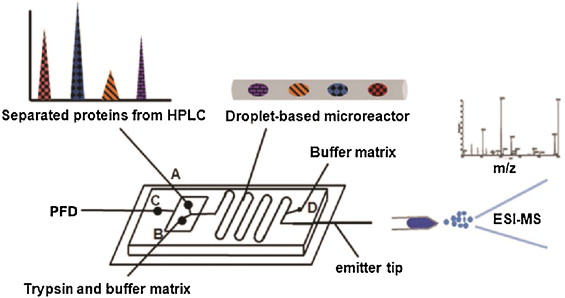 Microfluidics-to-m spectrometry: A review of coupling methods ... on boss snow plow solenoid diagram, fisher parts diagram, fisher plow diagram, fisher regulator diagram, fisher plow solenoid wiring,