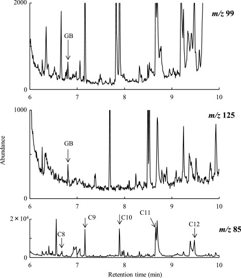 Gas chromatography-mass spectrometry with spiral large