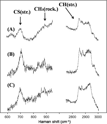Investigation Of Shape Controlled Silver Nanoplates By A