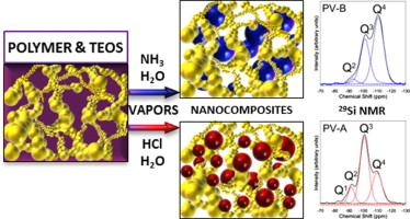 Insight into the structure of polymer–silica nano-composites