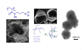 Bioinspired thermo- and pH-responsive polymeric amines