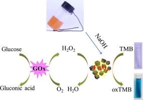 Peroxidase mimetic activity of Fe3O4 nanoparticle prepared