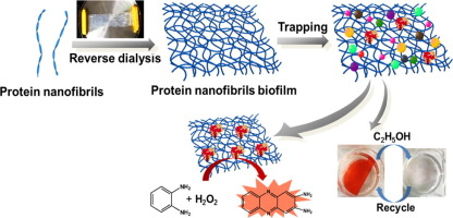 Supramolecular proteinaceous biofilms as trapping sponges for biologic water treatment and durable catalysis, X Wu, X Han, L Lv, M Li, J You, C Li, J. colloid interf. sci. 2018, 527, 117