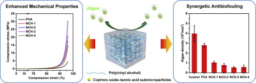 Poly(vinyl alcohol) hydrogels integrated with cuprous oxide