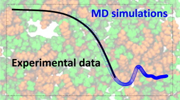 Combined molecular dynamics (MD) and small angle scattering (SAS