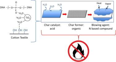 Ballesio F Lli Srl.Nanotio2 Dna Complex A Novel Eco Durable Fire Retardant