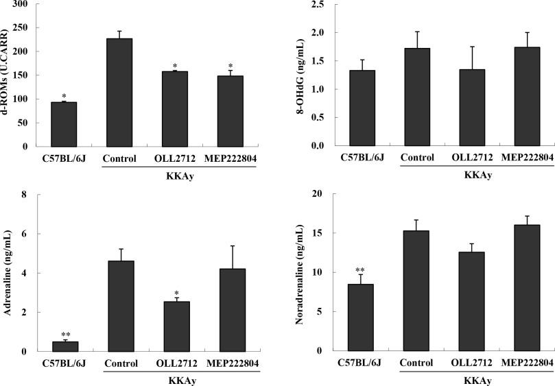 Identification of a Lactobacillus plantarum strain that
