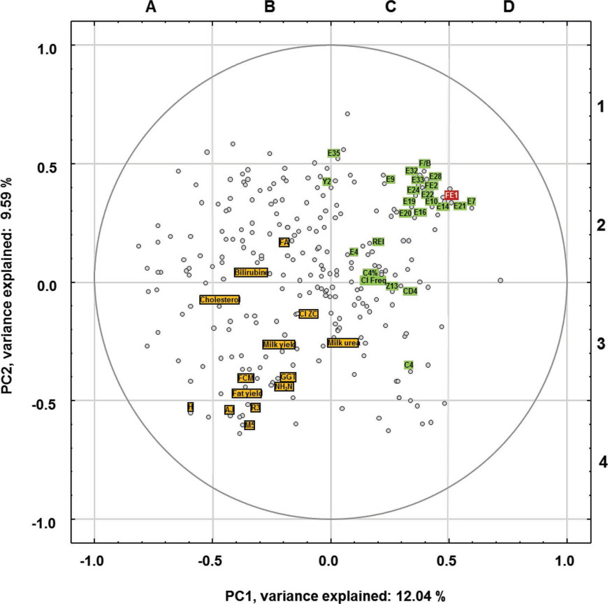 Interrelations between the rumen microbiota and production