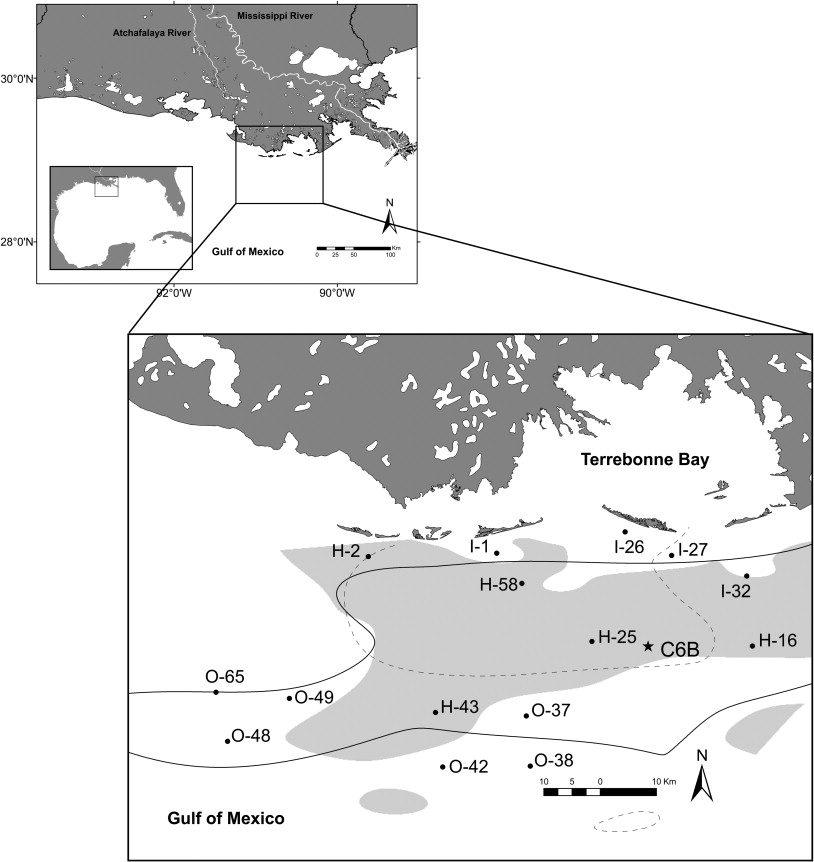 Effects of summer 2003 hypoxia on macrobenthos and Atlantic croaker