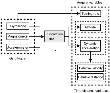 Animal-mounted gyroscope/accelerometer/magnetometer: In situ