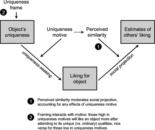 Appraising the unusual: Framing effects and moderators of uniqueness ...