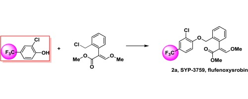 Discovery of flufenoxystrobin: Novel fluorine-containing