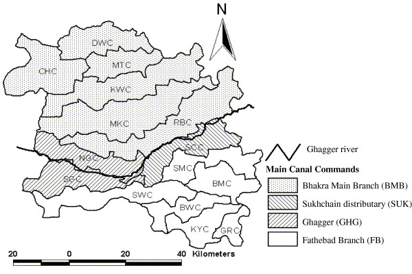 Distributed ecohydrological modelling to evaluate the performance of