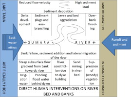 Morphological changes of Gumara River channel over 50 years