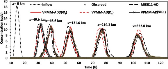 An embedded VPMM-AD model for riverine transient flow and