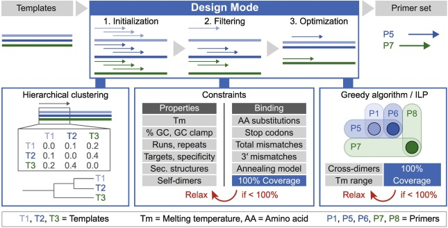 Openprimer For Multiplex Amplification Of Highly Diverse Templates Sciencedirect