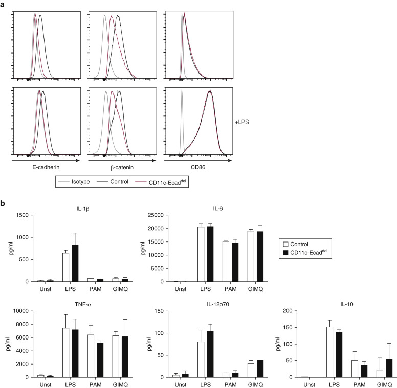 E-cadherin is dispensable to maintain Langerhans cells in the