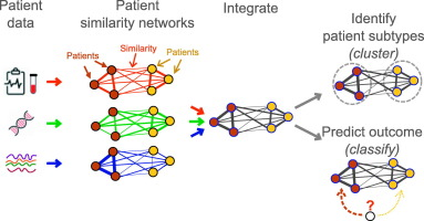 Patient Similarity Networks for Precision Medicine