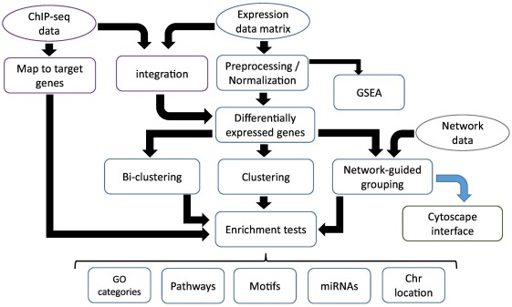 The EXPANDER Integrated Platform for Transcriptome Analysis