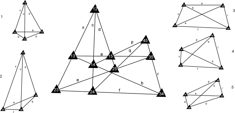 Quantum Angular Momentum Projective Geometry And The Networks Of