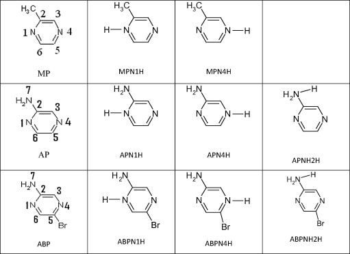 A Dft Study Of Pyrazine Derivatives And Their Fe Complexes In